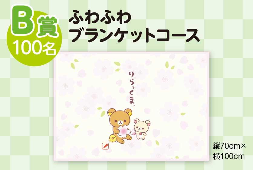 B賞:ふわふわブランケットコース(100名)